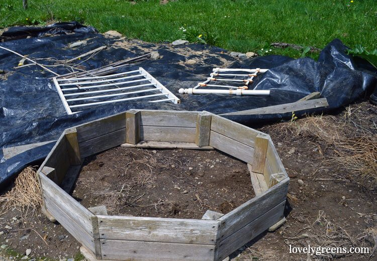 Building a wildlife pond in the vegetable garden garden Making a pond