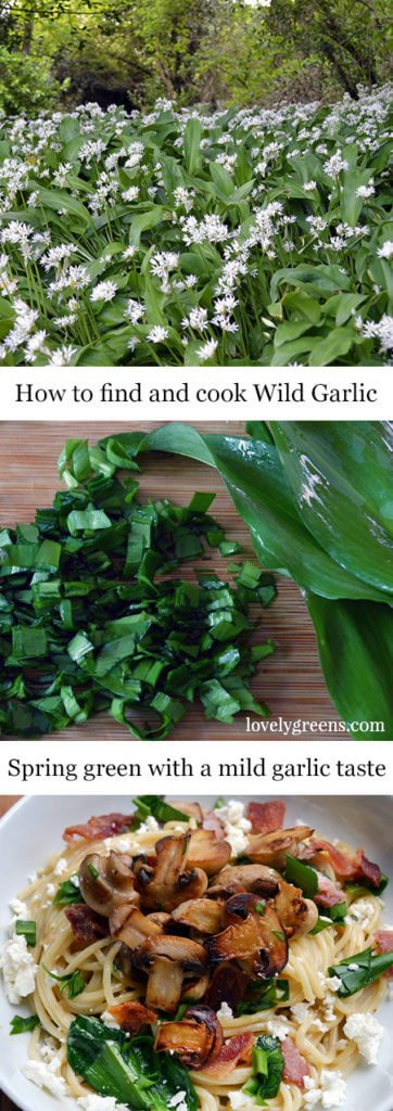 How to find, pick, and use Wild Garlic