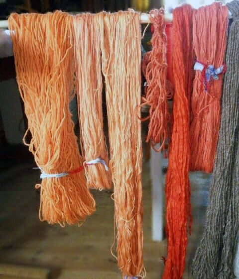 Wool dyed with Red-Gilled Webcap Mushrooms
