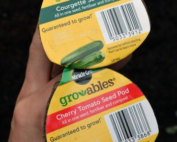 Growing veggies made easy? A gardeners' review of Miracle Gro's Gro-able Seed Pods