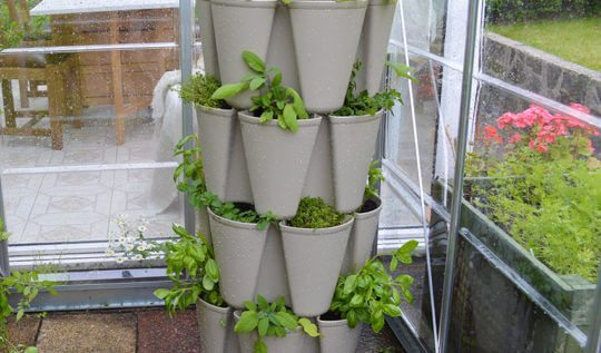 Grow a vertical herb garden in a Greenstalk stackable planter