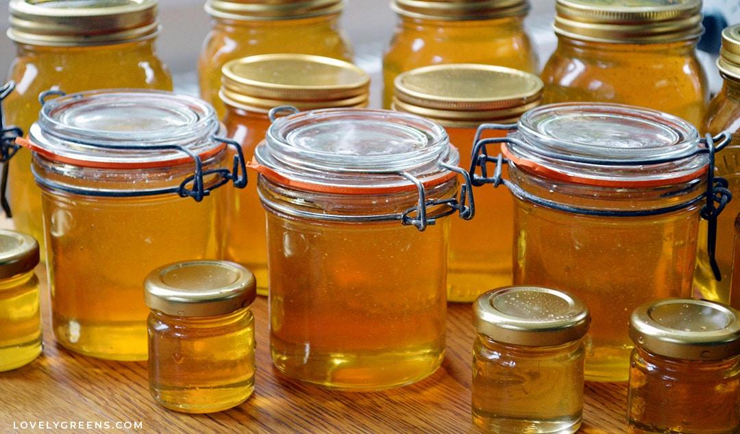 Why Vegans Should eat Honey