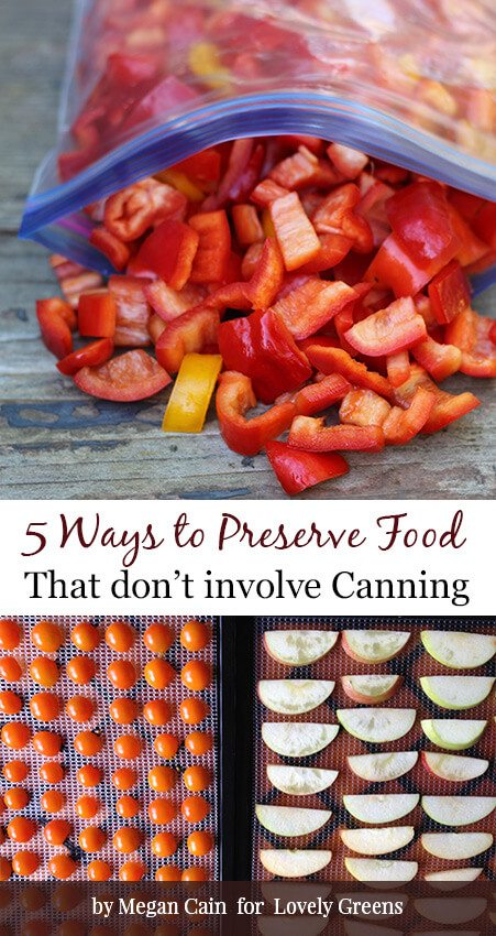 Five easy and quick ways to preserve fresh produce without canning including dehydration, freezing, refrigeration, and fermentation #kitchengarden #canning #homesteading