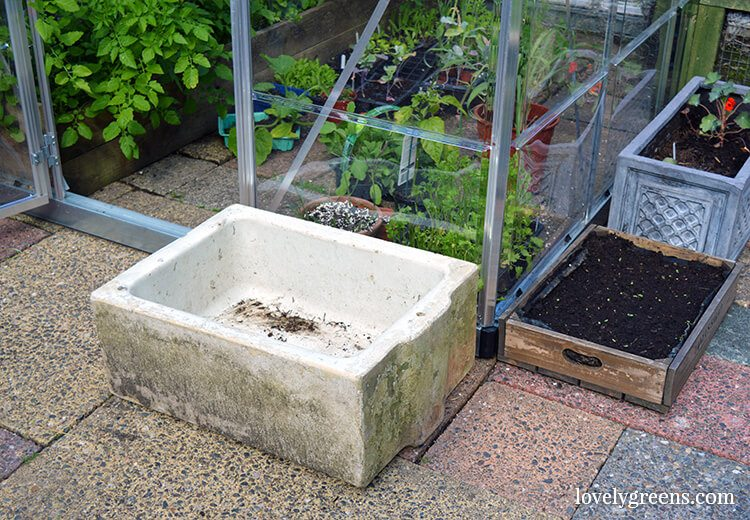 Garden Recycling: Growing herbs and greens at home in recycled containers