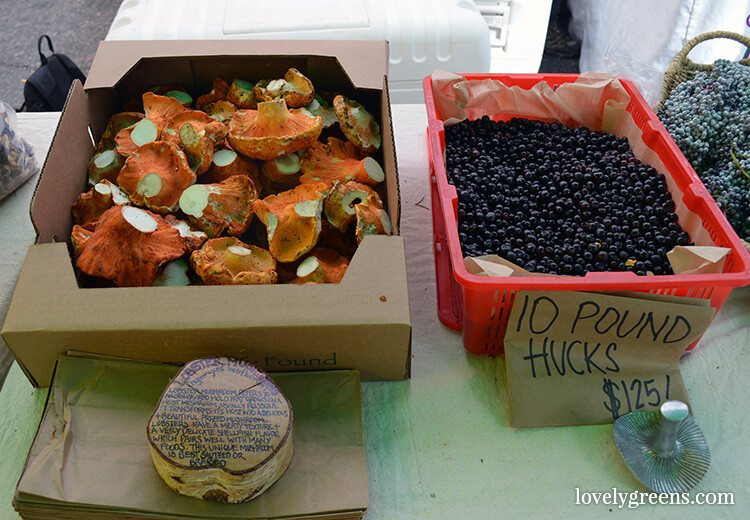 Lobster mushrooms and Huckleberries: Visiting the Ballard Farmers Market {locally grown food-porn ahead}