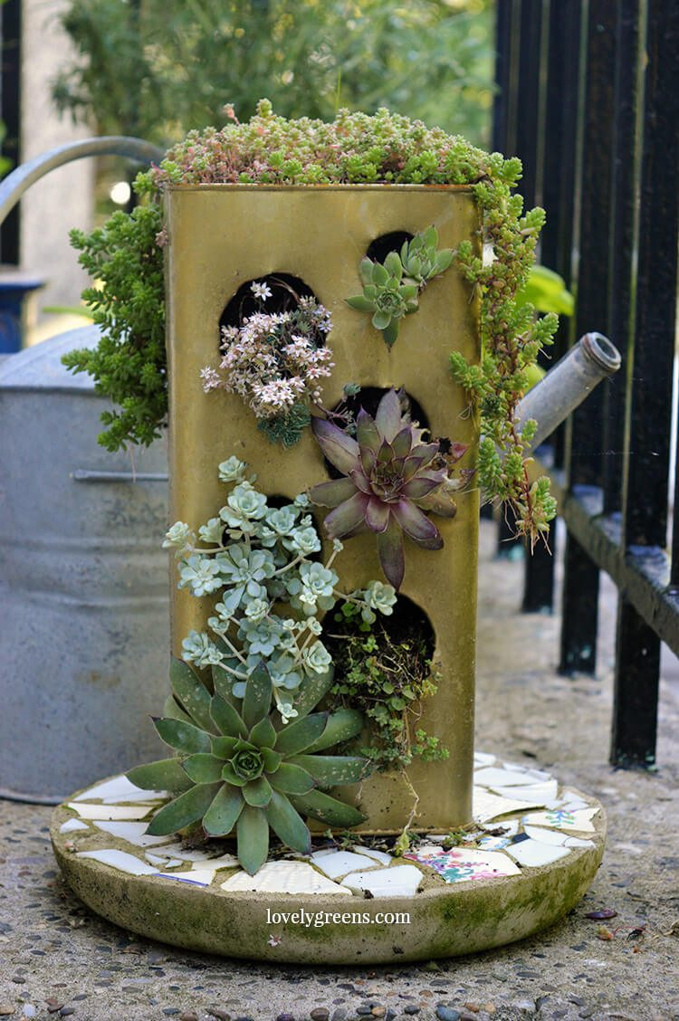 DIY Recycled Vertical Succulent Planter -- make this using an old tin can like a coffee can or tin used to store bulk olive oil. Instructions for punching the holes and planting it with succulents #lovelygreens #succulents #verticalgardening #verticalplanter #planteridea