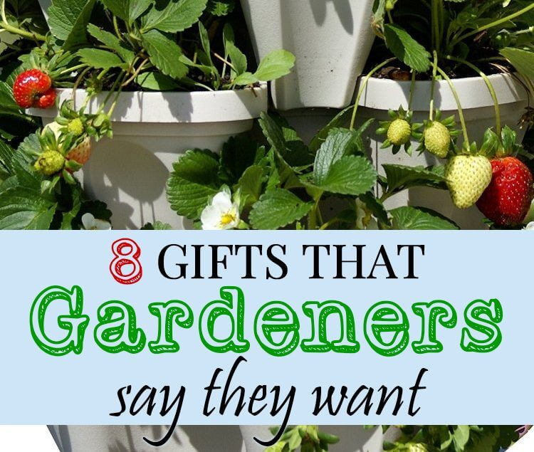 8 Gifts that Gardeners say they want for Christmas