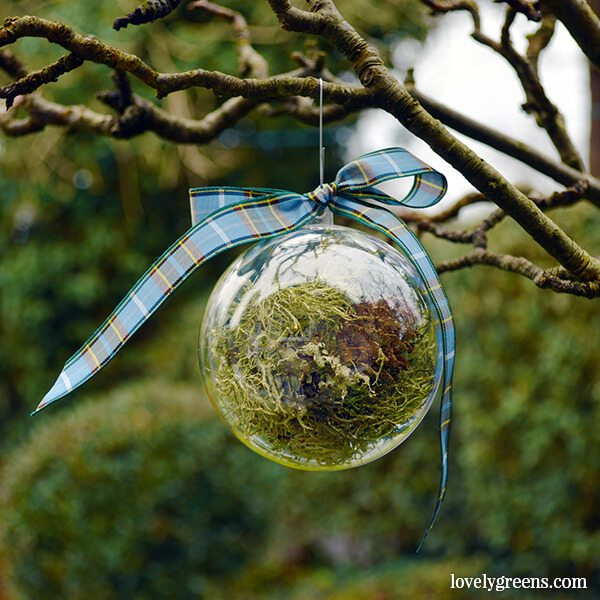 Laxey lichen and moss Christmas Bauble by The Bees Knees