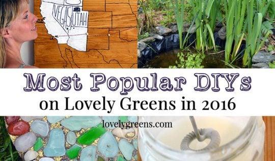 Most Popular DIYs on Lovely Greens in 2016