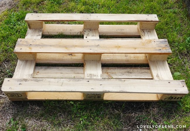 Step-by-step instructions for how to build a wood pallet potting bench. This is an inexpensive unit that you can stand at to do gardening jobs like sowing seeds and potting plants. The shelf underneath is also great for storing gardening materials. DIY video included #gardeningproject #pallet #palletproject