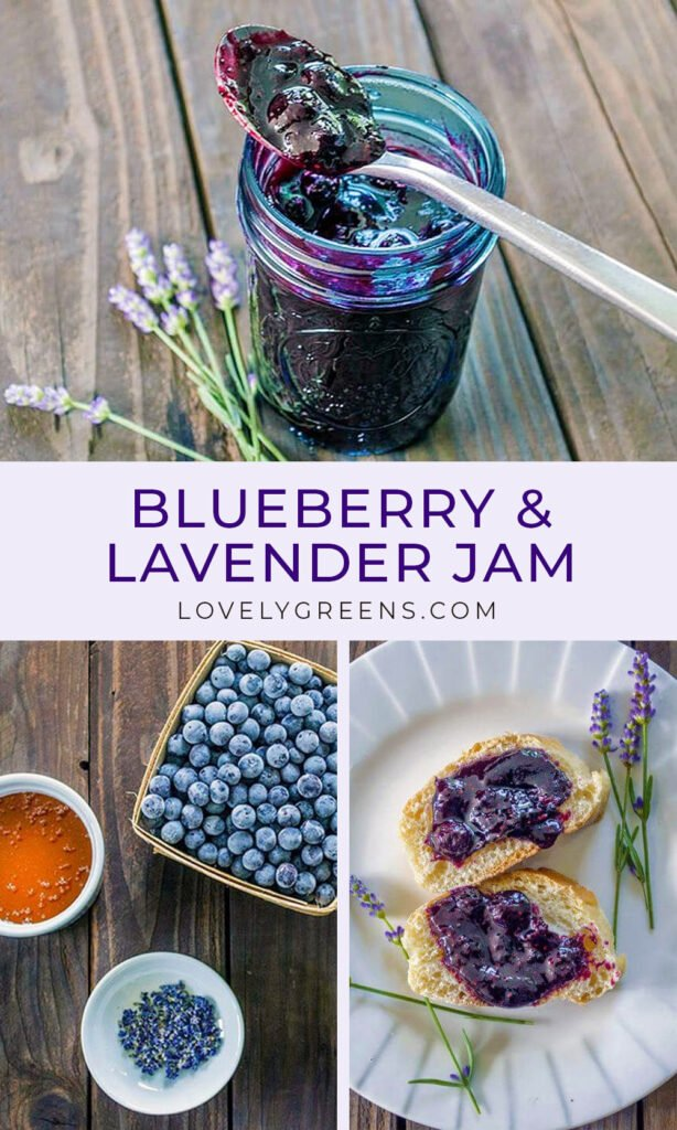 Blueberry and lavender jam recipe with fresh Lavender buds and sweet honey. Lavender adds a light floral and almost nutty flavor to this fruity jam #preserves #canning #jamrecipe