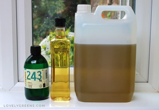 Instructions on how to make herb-infused oil using healing plants beneficial for your skin. Includes six different methods that take anywhere from an hour to several weeks to produce—also, tips on using herb-infused oil for skincare and salves #herbalism #herbs #skincare #salve