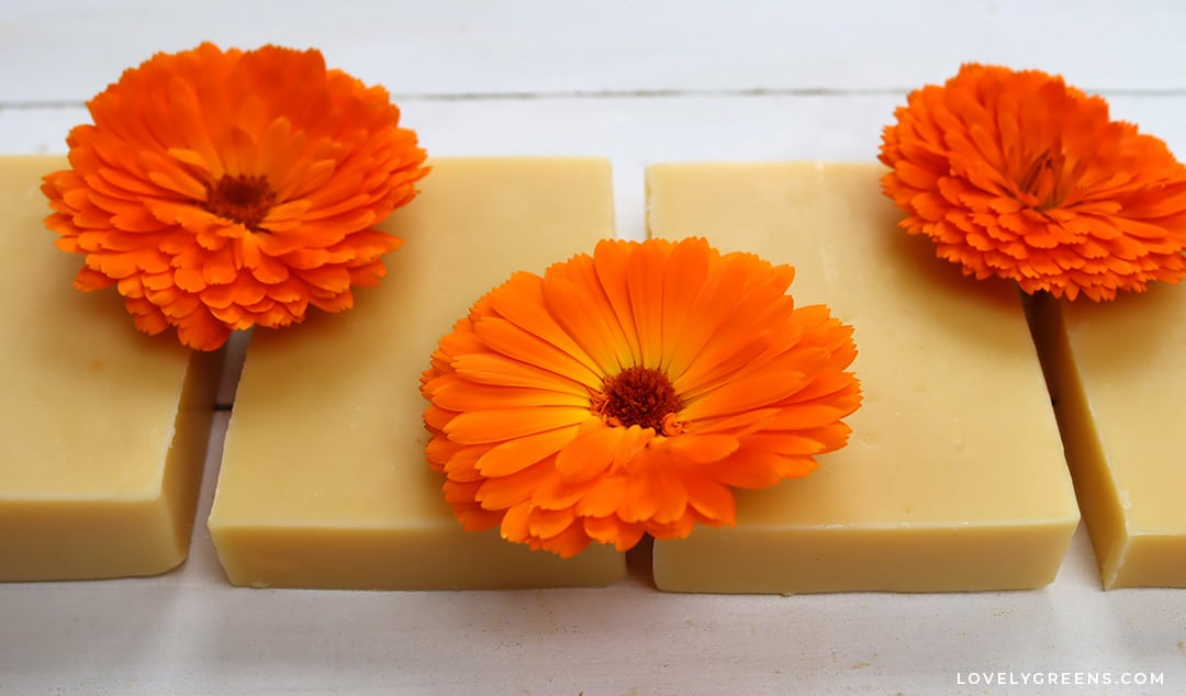 Make this Calendula-Infused Oil Soap Recipe for Natural Yellow Soap