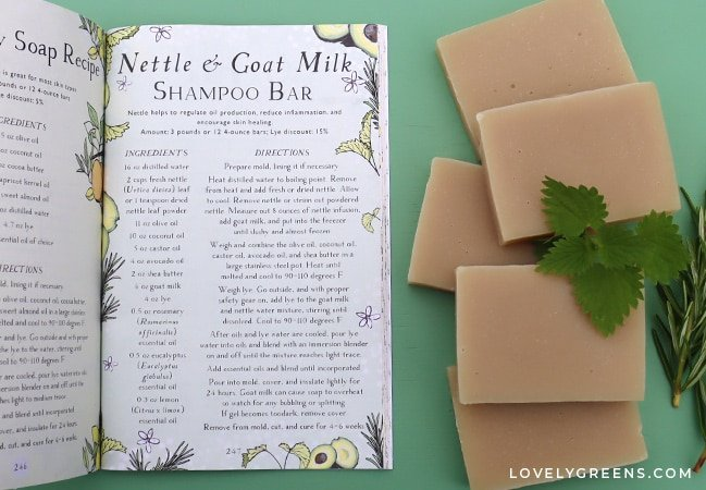 How to make herbal shampoo bars with goat milk, nettles, and essential oils using the cold-process soapmaking method. This is a recipe from the Herbal Academy and includes guidance on how to use shampoo bars without ruining your hair #soapmaking #shampoobar #soaprecipe
