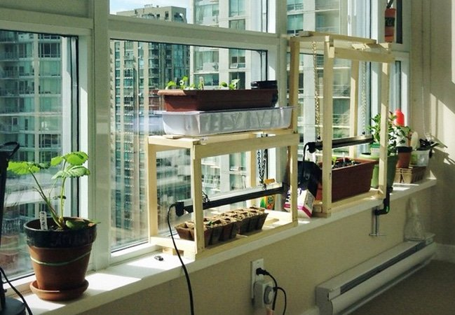 Grow your own food throughout the year with an indoor vegetable garden. Discover the best vegetables to grow indoors, how to grow food hydroponically or with potting mix, lighting, nutrient and water requirements, pest advice, and tools #gardeningtips #houseplants #vegetablegarden