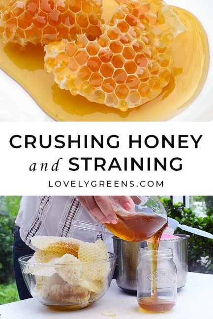 How to harvest small amounts of honey straight from the comb. This crushing and straining honey method requires no special tools or equipment #beekeeping #homesteading #honey