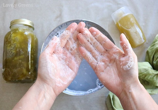 Recipe and instructions for how to make liquid hand soap using olive oil and coconut oil. Makes over two quarts of natural liquid soap for use in pumps and squeezy bottles #soaprecipe #makeliquidsoap #soapmaking