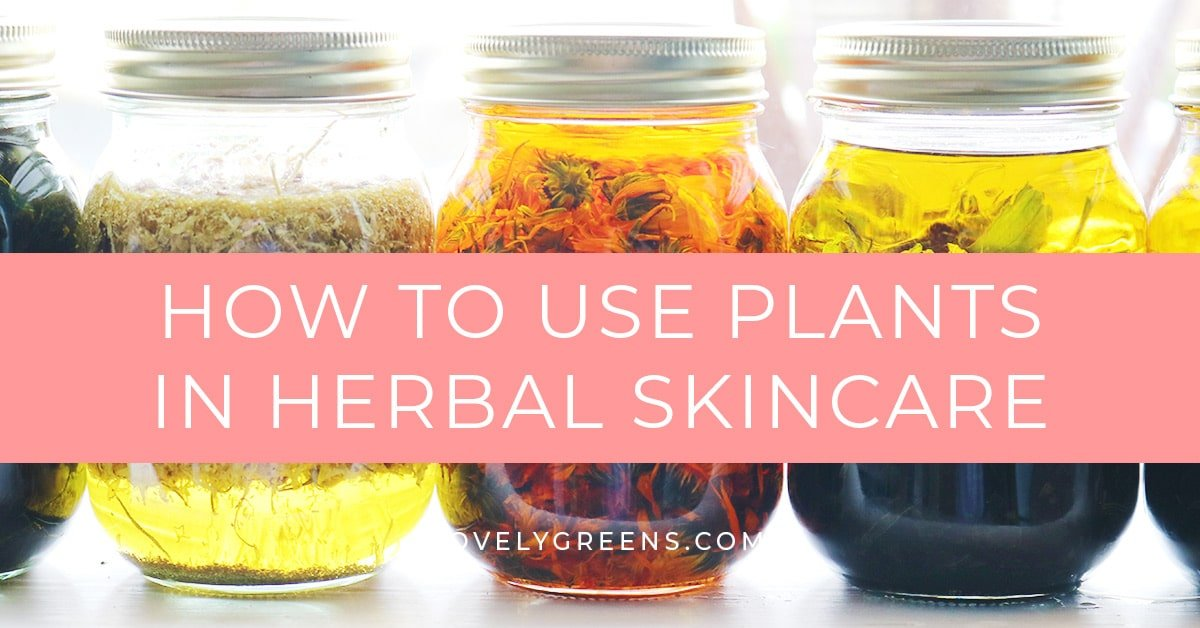 DIY Herbal Skin Care: how to use plants to make natural