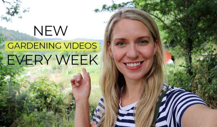 Lovely Greens DIY & Gardening Videos