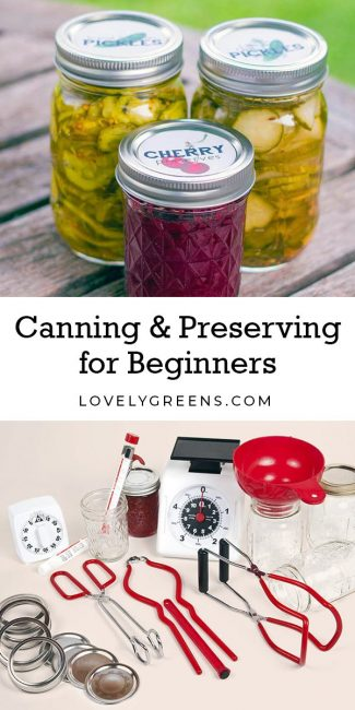 Canning & Preserving Food for Beginners: learn to preserve fresh fruit and vegetables in homemade jellies, jams, chutneys, pickles, & more #homesteading #canning #preserving #bottling