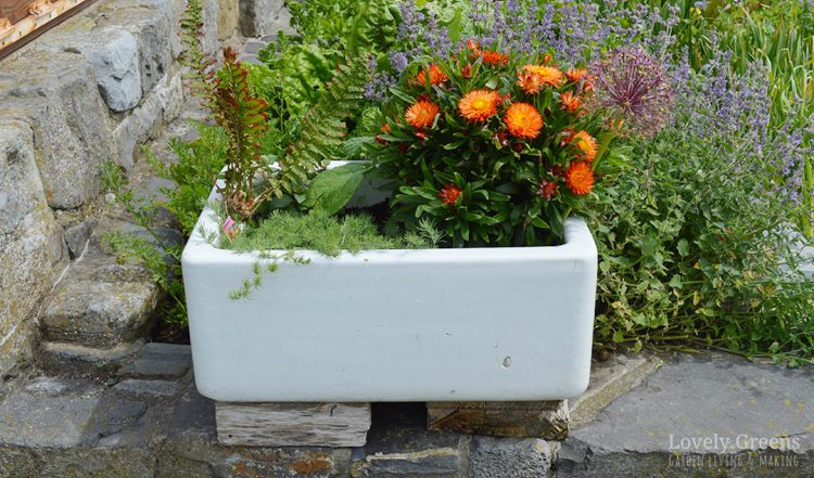 Planters Ideas on pillow ideas, plaque ideas, outdoor ideas, very cool science project ideas, retaining wall ideas, vase ideas, gardening ideas, truck ideas, white ideas, garden ideas, plate ideas, animal ideas, teapot ideas, lantern ideas, leather ideas, coffee table ideas, plant ideas, stand ideas, pot ideas, bird feeder ideas,