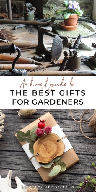 An Honest Guide to the Best Gifts for Gardeners: Buying a gift for someone with a passionate hobby is tricky. That's why I'm sharing three gifts for gardeners that you can't go wrong with, and a list of garden gifts to avoid #gardeningtips #gardening