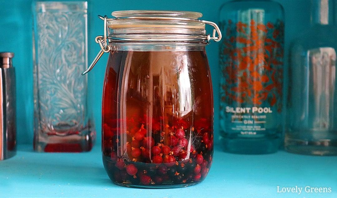 Easy & Delicious Blackcurrant Liqueur Recipe