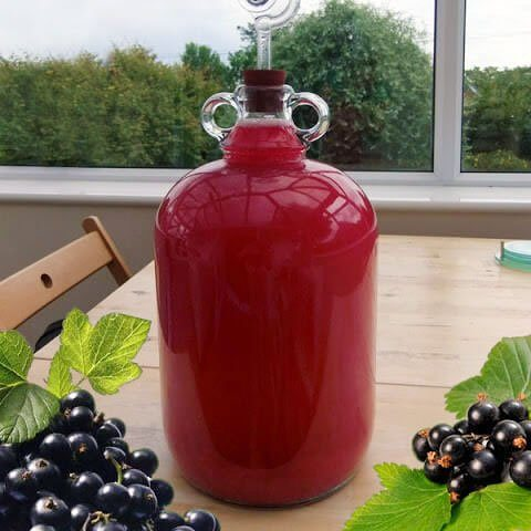 how to make blackcurrant wine