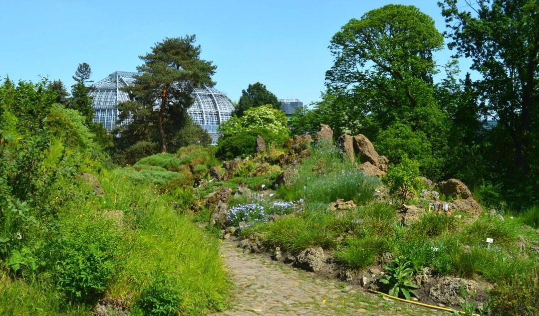 Outdoors At The Berlin Botanical Garden