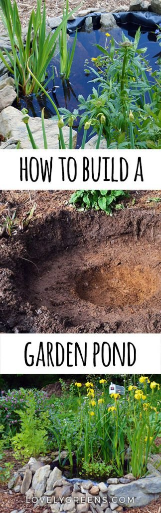 How to build a small pond for the garden lovely greens for How to build a small lake