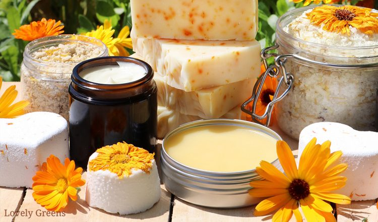 Calendula: A guide to Growing & Using it in Skin Care