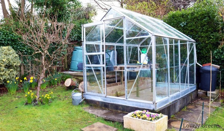 Deep Cleaning the Greenhouse with eco-friendly products