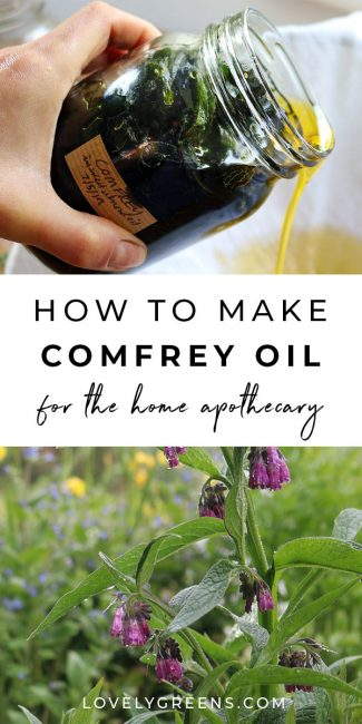 How make Comfrey Oil and why it's controversial. Includes using comfrey externally to heal bruises, sprains, and other injuries, information on alkaloid toxicity, how to make comfrey oil, and a recipe for making a healing comfrey salve #lovelygreens #herbs #herbalmedicine