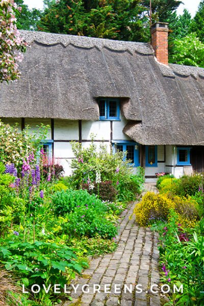 Tips for how to create an English cottage garden, including classic plants and flowers, planting methods, and money-saving advice. Any growing space, large or small, can be transformed into the cottage garden of your dreams #gardeningtips #cottagegarden #gardendesign