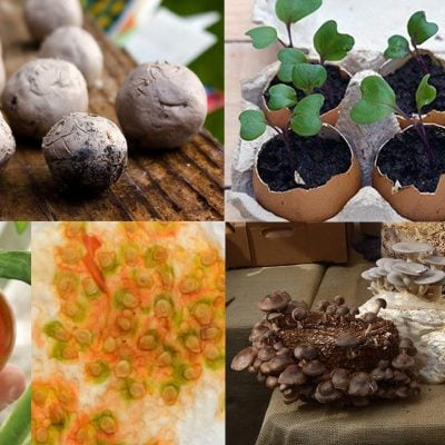 12 DIY kitchen garden ideas geared to give you a creative gardening activity for every month of the year. Whether you're reading this in January or July, jump into the project of the month to discover a new way to grow your own food #vegetablegardening #lovelygreens #gardenideas
