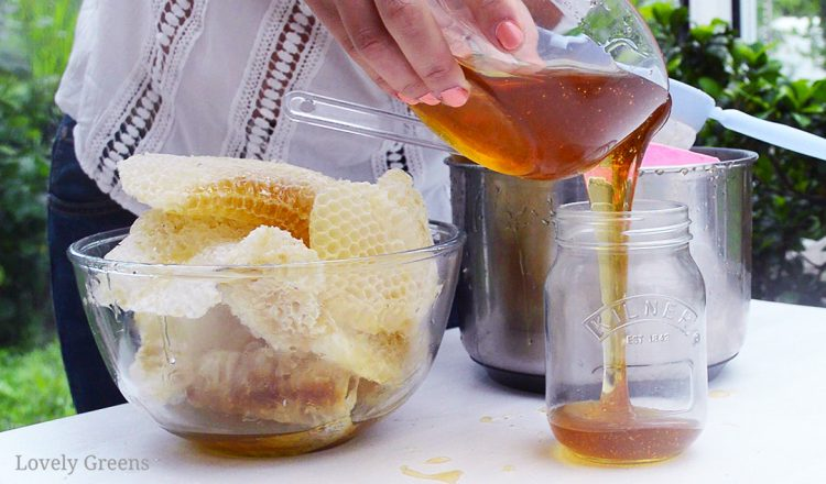 Harvesting Honey: Crushing and Straining Honey
