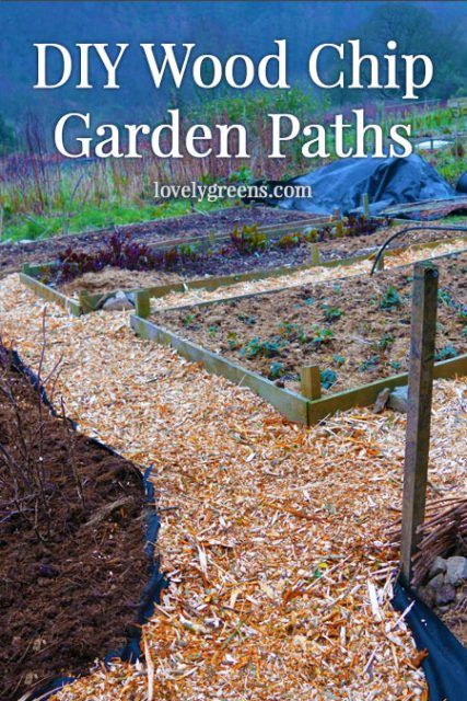 Frugal Gardening Idea: Create easy wood chip garden paths