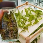 How to dry peppermint leaves to use in tea, beauty products, and food recipes. Methods include air-drying, using a food dehydrator or drying it in the oven #lovelygreens #preservingfood #herbs