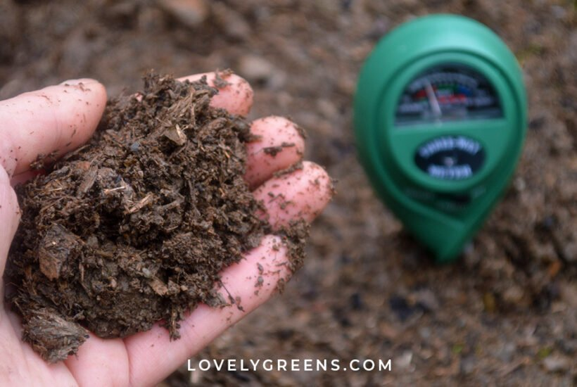 How to test the pH of your garden soil, why it's important, and how to amend the pH. Ph testing demonstrated with a pH meter and a traditional soil test #gardeningtips #vegetablegarden