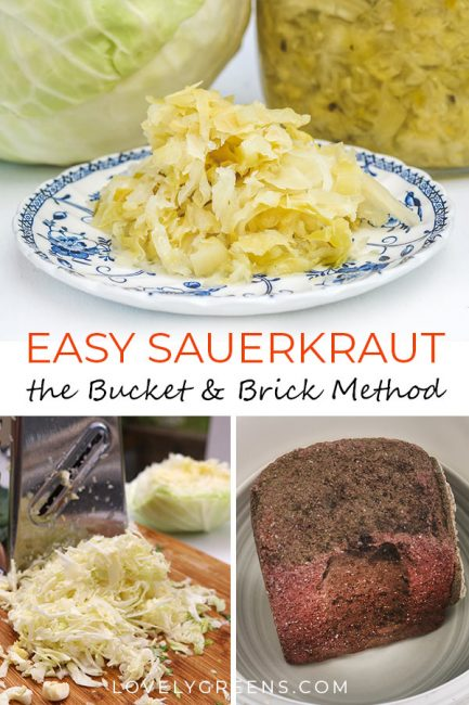 Easy Sauerkraut Recipe using the Bucket and Brick Method -- make sauerkraut using a very simple recipe and method. All you need is cabbage, sea salt, a bucket, bowl, and brick #lovelygreens #fermenting #cabbage #cabbagerecipe #vikings #preserving