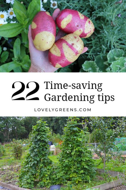 22 Smart tips to save time & effort in the garden including ways to reduce time watering, weeding and digging #gardeningtips #vegetablegarden #gardening