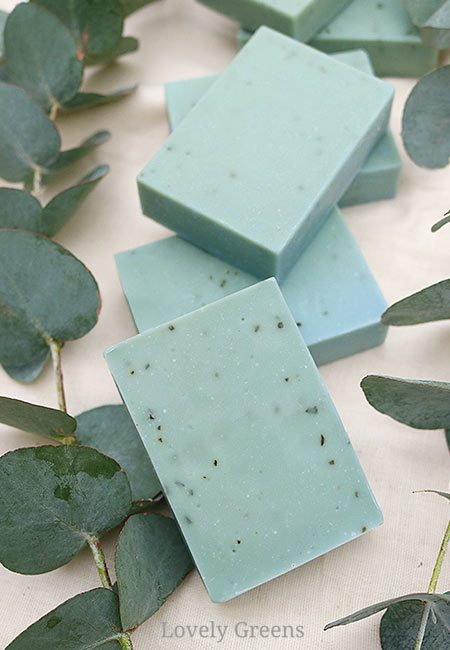 DIY Instructions for this natural eucalyptus soap recipe. Eucalyptus essential oil opens airways making this a great soap for the cold and flu season #soapmaking #soaprecipe #coldsandflu