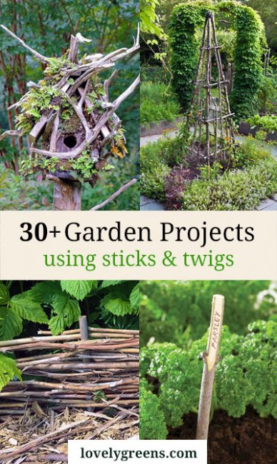 30 Garden Projects Using Sticks Twigs