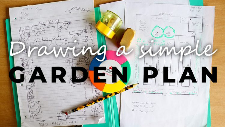 Vegetable Garden Design: How to draw a Simple Garden Plan