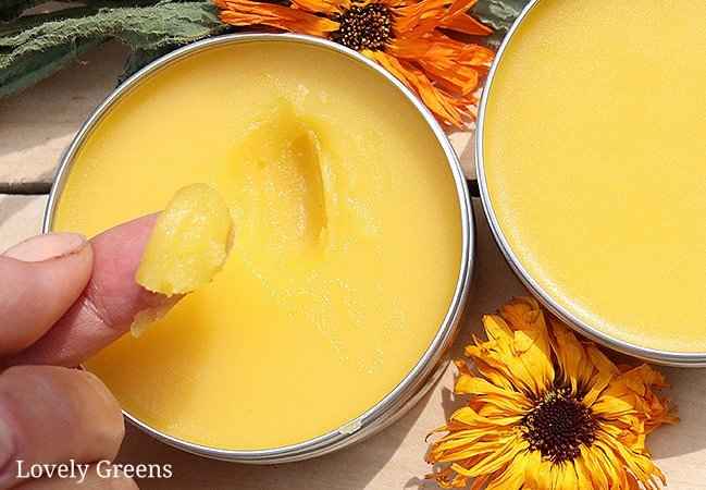 Gardeners Healing Salve recipe using calendula, plantain, and comfrey. These herbs along with beeswax help to cleanse, nourish, heal, and protect #lovelygreens #herbalism #herbalmedicine #diybeauty