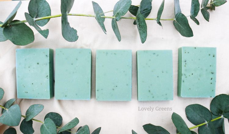 Herbal Eucalyptus Soap Recipe