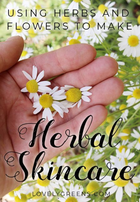 How to make Herbal Skincare using homegrown Herbs & Flowers. Includes how to extract the beneficial compounds in herbs and flowers for making natural herbal skincare with water and oil infusions #lovelygreens #diybeauty #diyskincare
