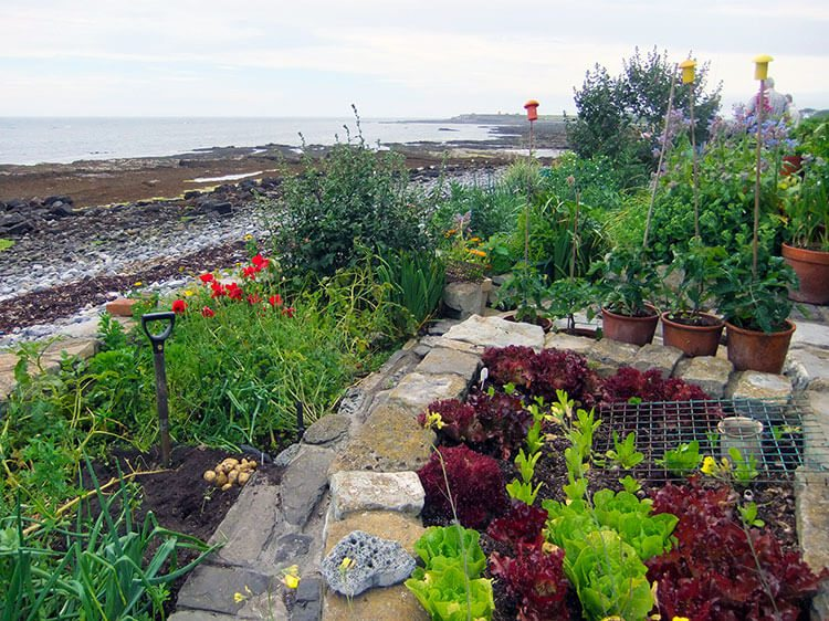 The Hidden Gardens of Castletown