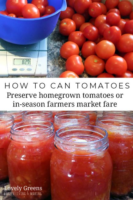 Preserve the harvest: how to Bottle Tomatoes. Traditional recipe for how to can tomatoes. Use this method to preserve homegrown tomatoes or buy them in-season from the farmers market #lovelygreens #preserving #canning #tomatorecipe #selfsufficient #bottling #gardenrecipes #foodinjars
