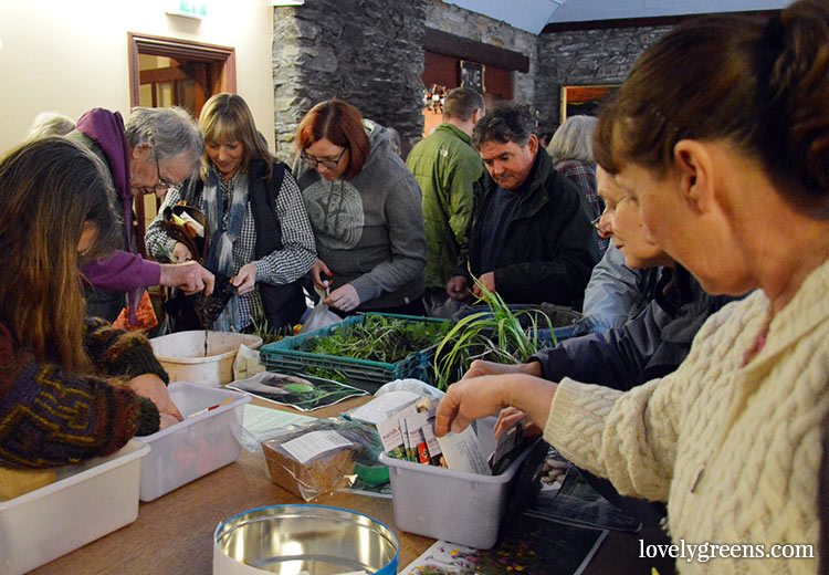 The 2017 Seed Swap & Plant Share is taking place on Sunday, April 9th at the Laxey Sailing Club on the Isle of Man. Entrance and seeds are free!